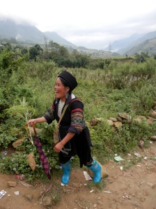 Hmong guide