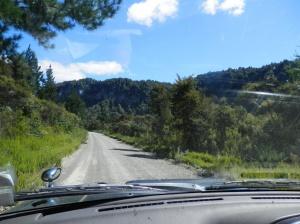 Tarawera Reserve