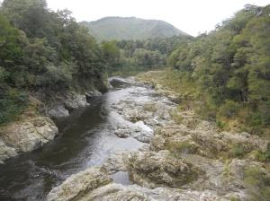 Pelorus Bridge