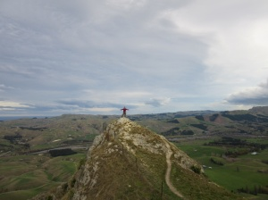 At the top of Te Mata peak