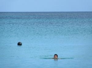 Shark!? Buoy!?